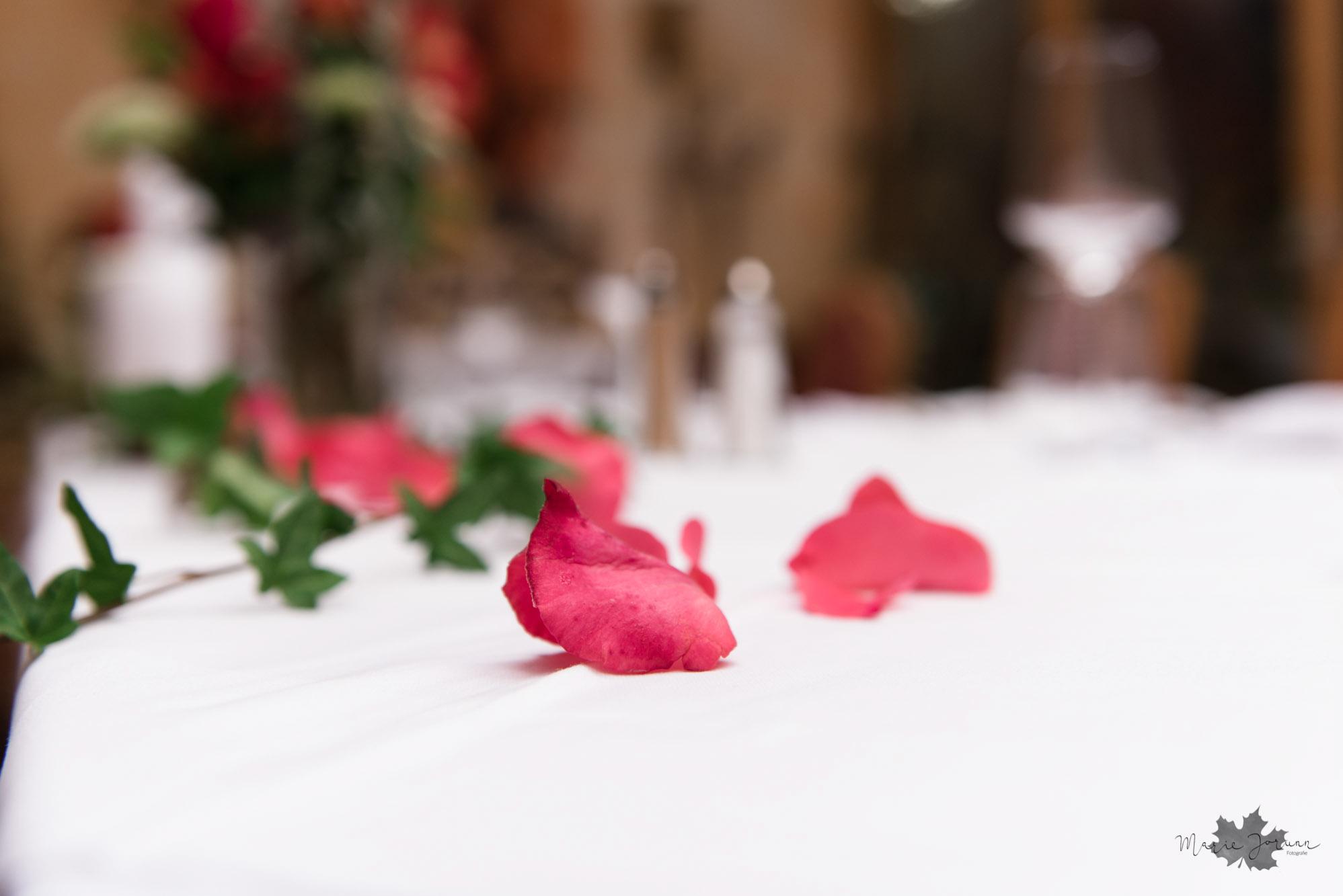 Marie Jorunn Fotografie Wedding1