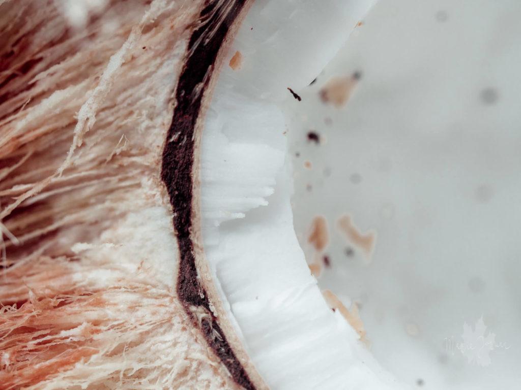 Kokosnuss 6