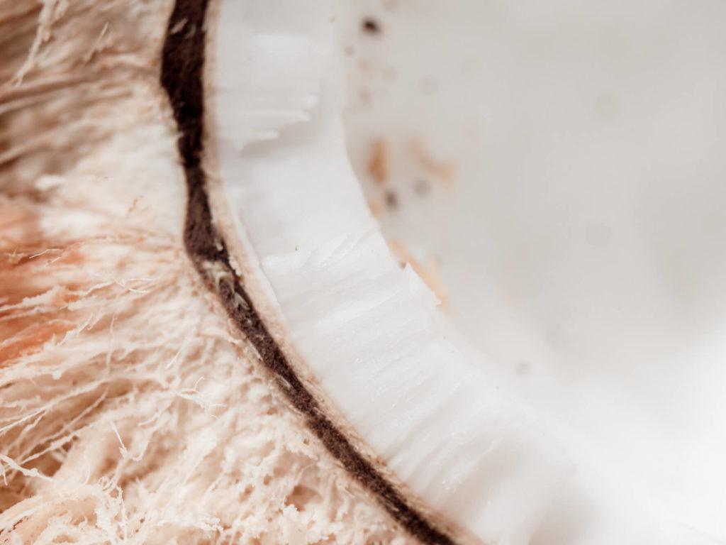 Kokosnuss 7